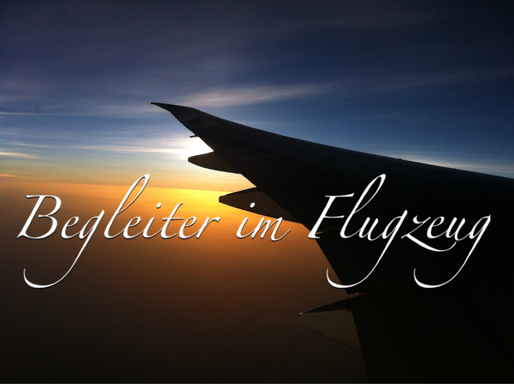 Begleiter im Flugzeug Reisen Travel Cosmetics Essentials Kosmetik Lifestyle PepperAndGold Flugreise Reisebegleiter TravelBasics