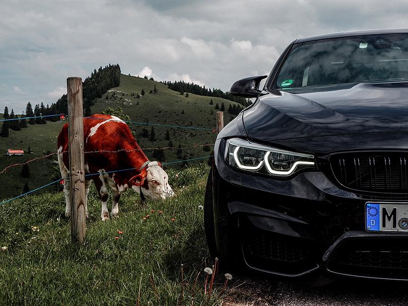 BMW M3 Bayern
